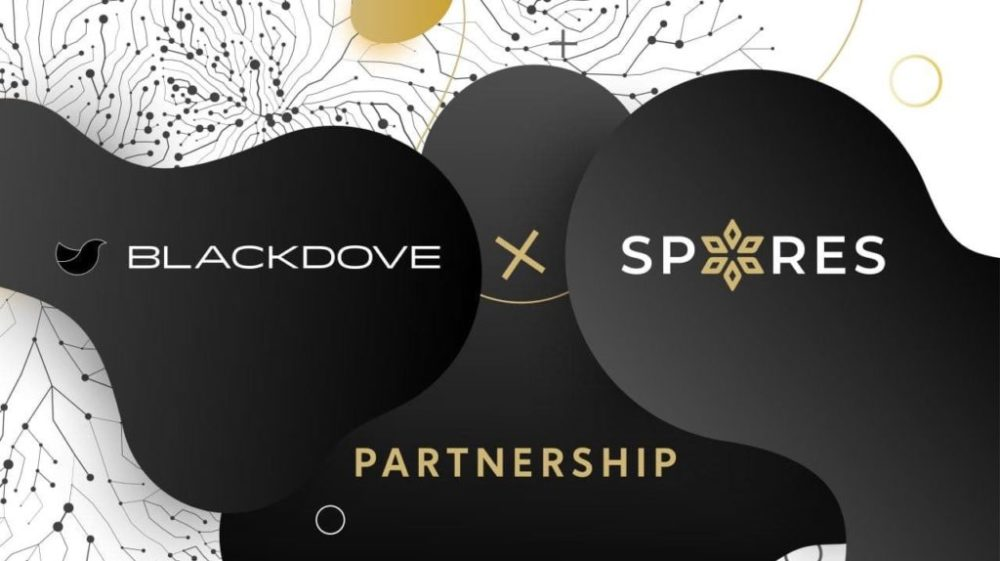 Blackdove - Spores - NFT Display Partners